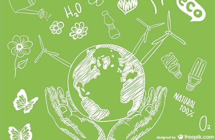 Recomandari magazine online de remedii naturiste si produse bio