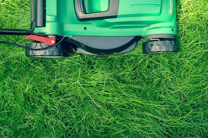 gazon verde masina de tuns iarba
