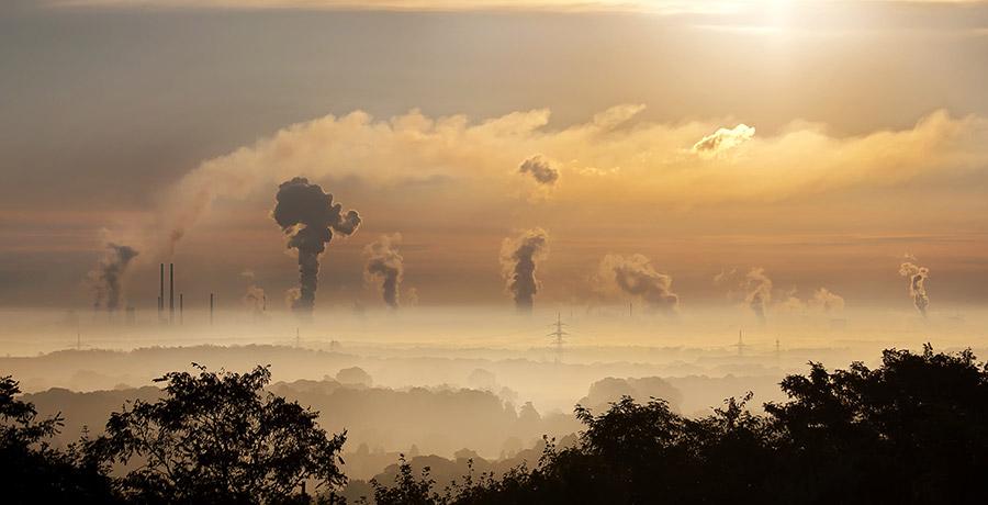 Cum te protejezi de poluarea aerului: produse si sfaturi generale