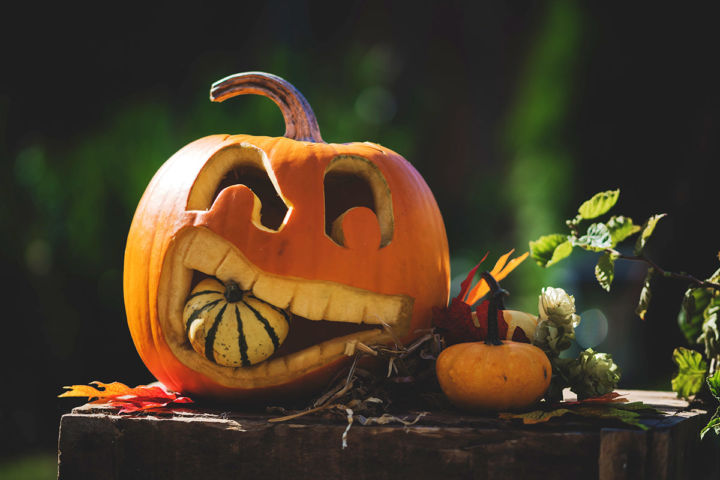 Recomandarile Shopniac saptamana 44: 26 Octombrie – 1 Noiembrie 2020